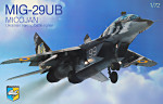 MiG-29 UB Soviet training battle fighter