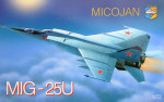 Mig-25PU Soviet training battle interceptor
